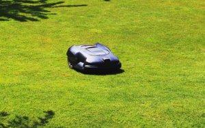 Bild von Mähroboter im Garten