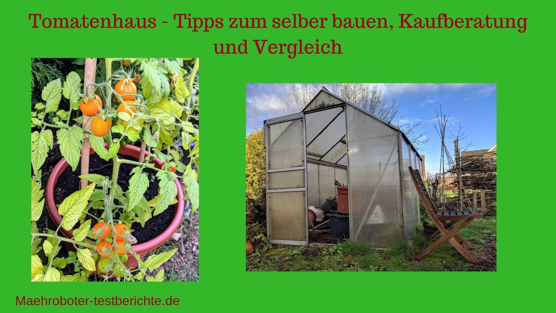 tomatenhaus test bild