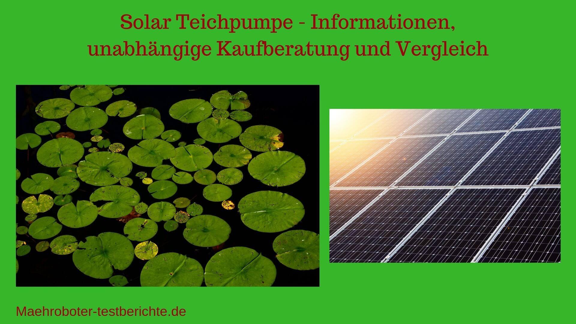 solar teichpumpe test